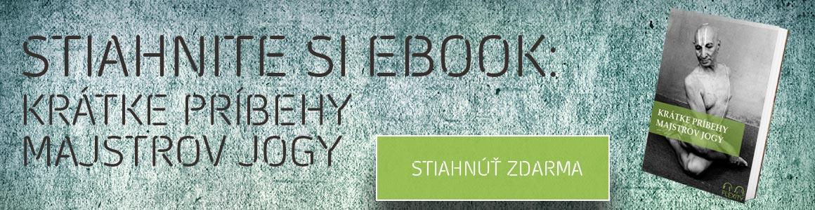 ebook-majstri-jogy-flexity